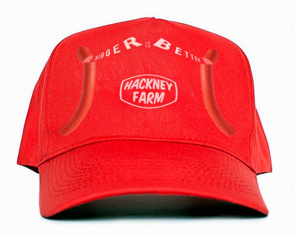 Bigger is Better | Hackney Farm Cap | Michael Croft | London Artist